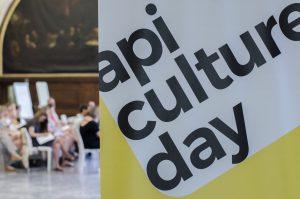 API culture day